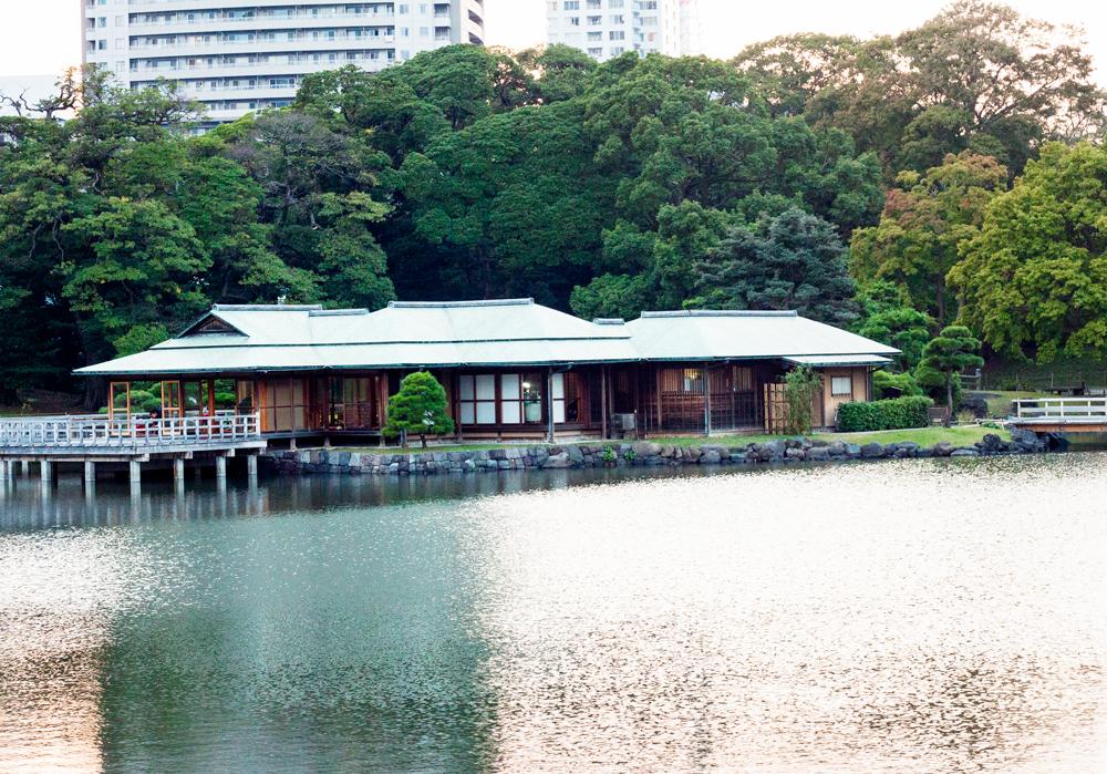 Hama-rikyu Gardens10
