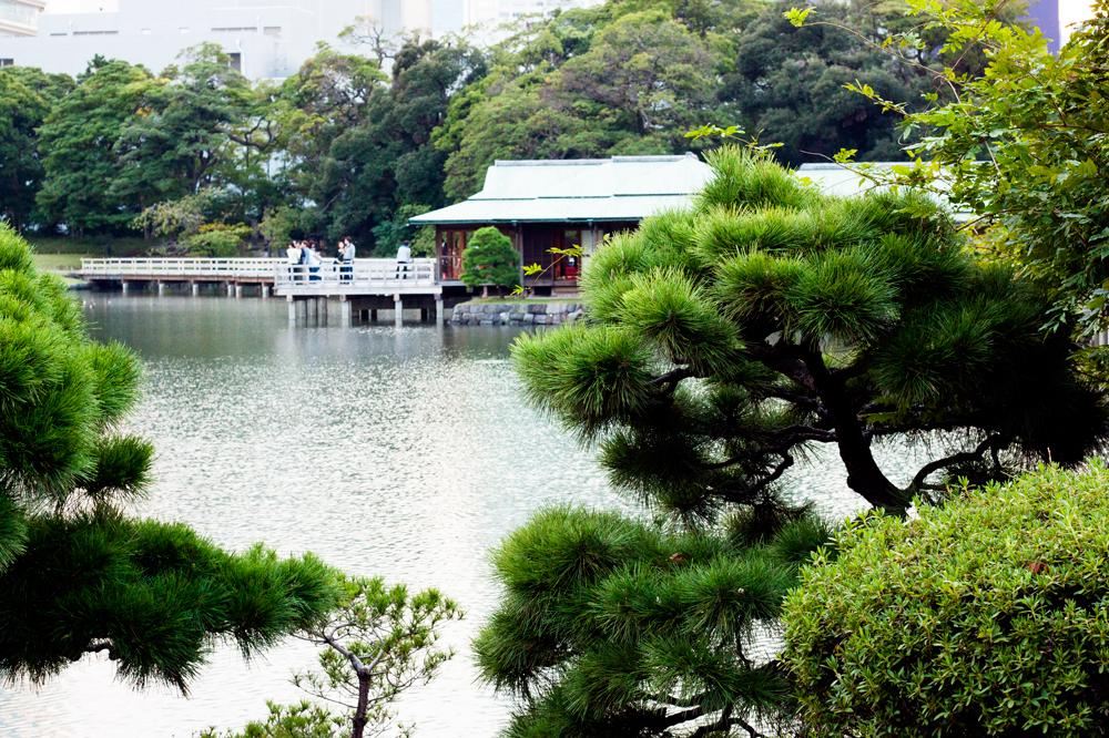 Hama-rikyu Gardens3