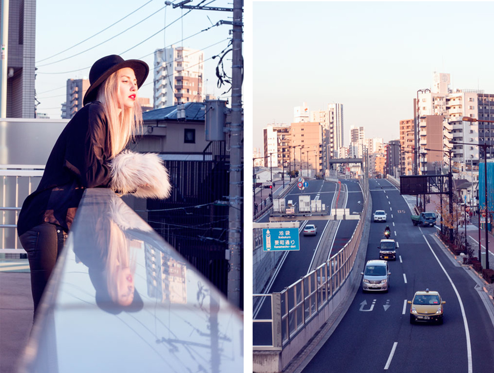 Faux fur clutch, Tokyo, Japan