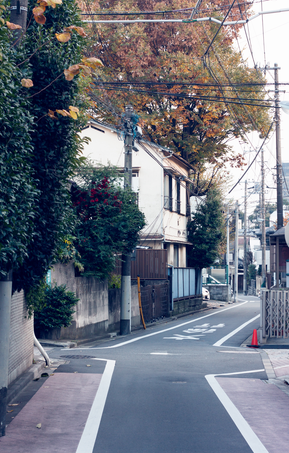 typical neighborhood street in tokyo, japan