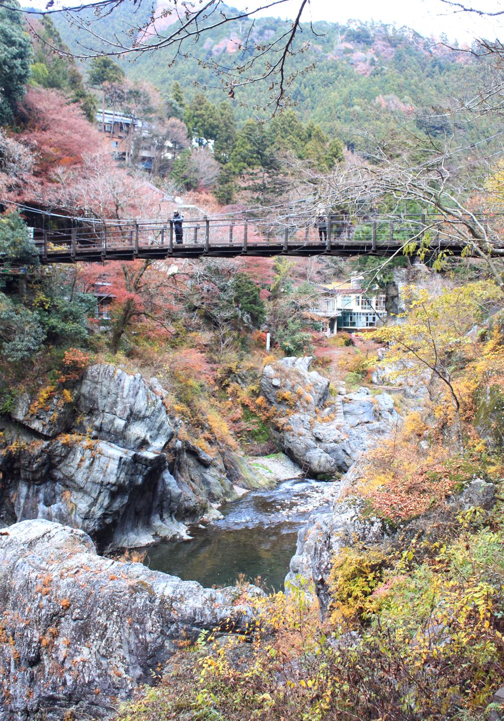 Otama walking trail, japan hiking, okutama city, kori station, tokyo, fall colors, japan nature