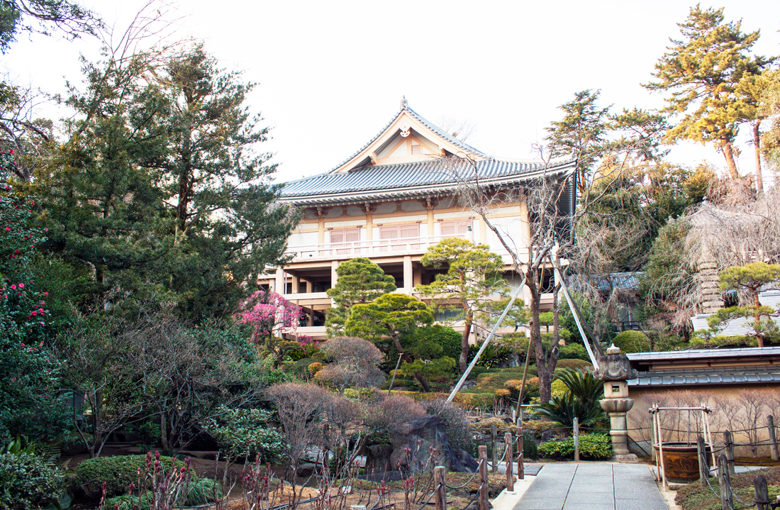 calle evans, embroidered dress, japanese temple, pink temple, tokyo, japan, japanese culture, cat eye, yakuoin temple