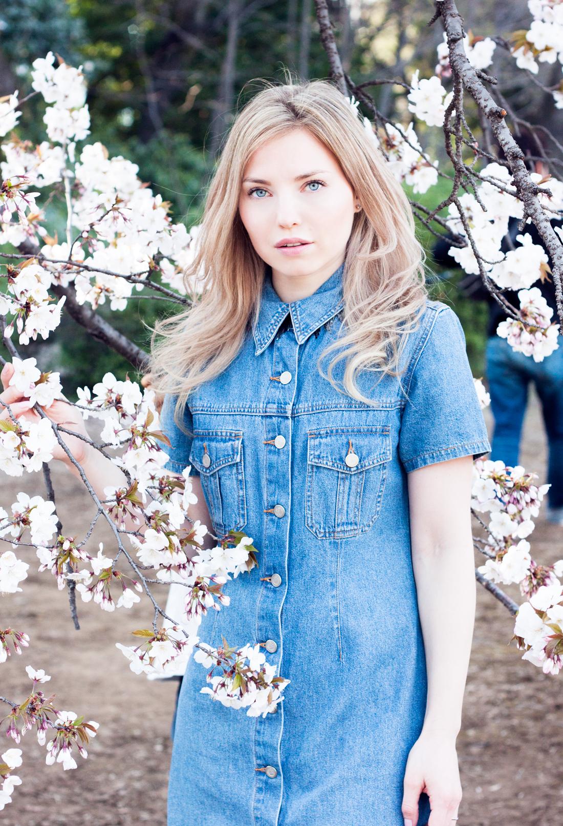 cherry blossom, spring, japanese spring, tokyo , japan, sakura season, shinjuku, shinjuku gyoen national garden, denim dress,