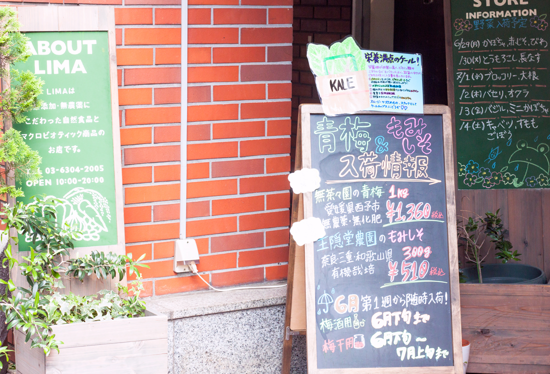 Lima cafe tokyo, vegan ice cream, macrobiotic food tokyo, vegan restaurant tokyo, vegetarian tokyo, vegan japan, vegan food tokyo