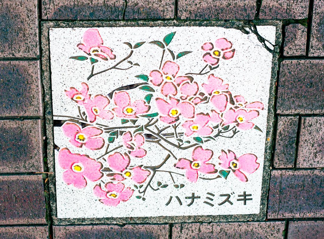 Hiroo tokyo, hiroo, tokyo sightseeing, cherryblossomstreet, cherryblossom tiles, tokyo pumpkin, tokyo, japan