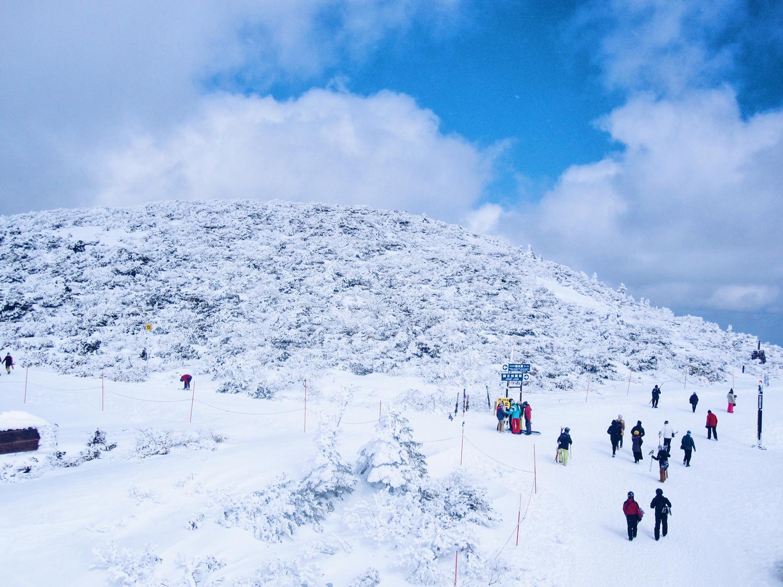 zao onsen ski resort, ski resort japan, ski resort close to tokyo, japan skiing, onset resort, sulphur onset, zao skiing, zao snow monster, zao snowboarding, zao rental, zao mountain, zao snow, japan sightseeing, japanese onsen