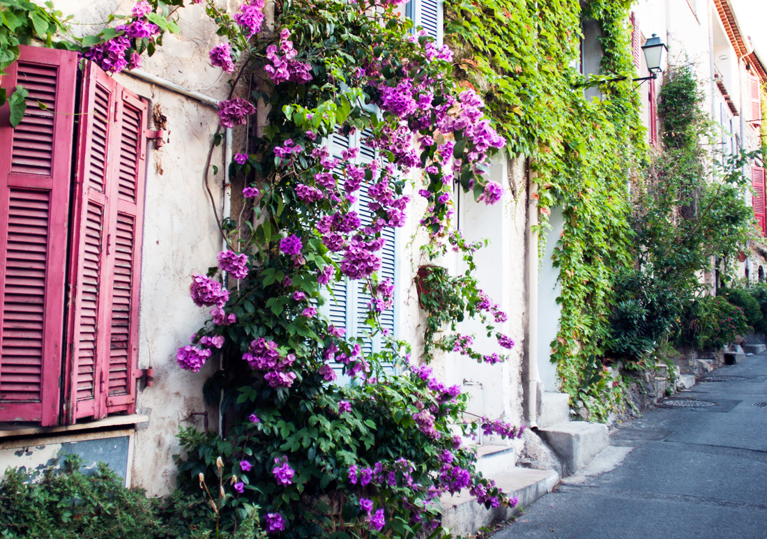 Rue du haut castelet Antibes, antibes flowers, antibes flower street, antibes, antibes vacation, antibes what to do, travel blog, hair blog, twisted hair, pull through braid, pull through and twist braid, purple lace dress, lace antibes, lace dress france, hair feed